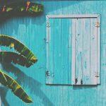 background-blue-palm-trees-photography-Favim.com-3875641.jpg