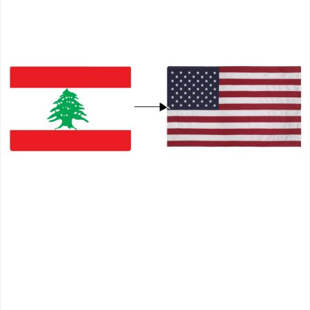 Lebanese man moving to America